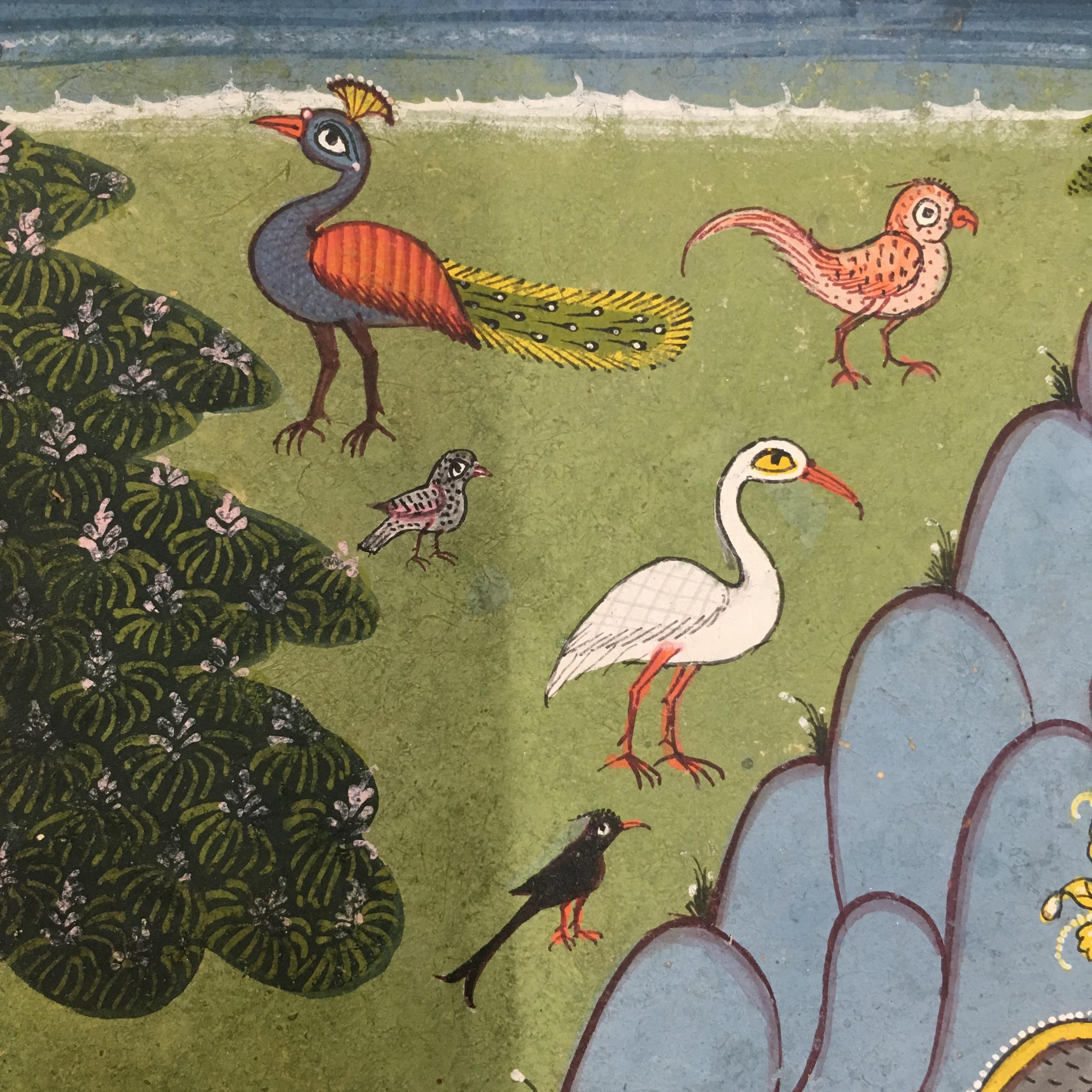 close up of birds in a garden