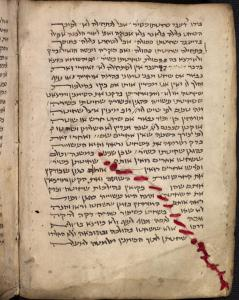 Hebrew miscellany, 13th century, Bodleian Library, Oxford, UK.