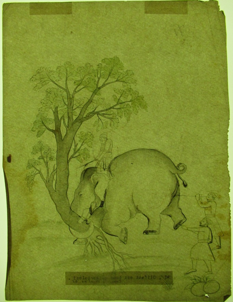 An elephant uproots a tree, Guler style, RV-3025-65, Volkenkunde museum.